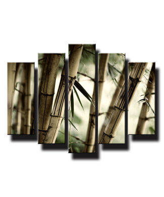 5 dielny obraz na stenu bambusy