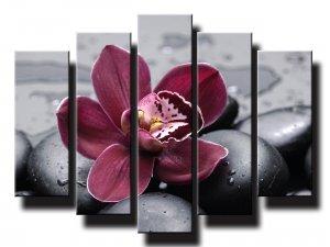 5 dielny obraz na stenu orchidea na kameňoch feng shui