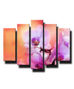 5 dielny obraz na stenu orchidea oranžova